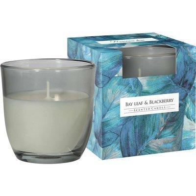 Bispol świeca zapachowa w szkle w pudełku 100 g - Bay Leaf & Blackberry