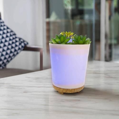 Lampa zapachowa do aromaterapii dyfuzor ultrasoniczny aromalampa Botanical doniczka sukulent LED